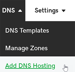 click add dns hosting