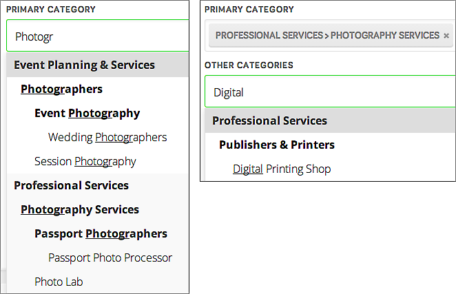 Type into the Primary Category field and then the Other Categories field