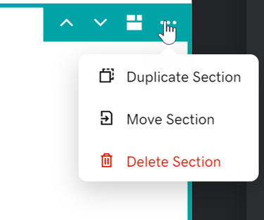 Screenshot of the settings section icon when a section is selected