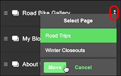 Select destination page, click Move