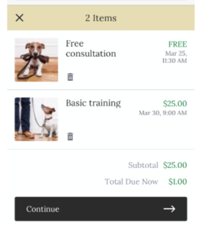 A screenshot of a customer checking out of a site with two appointments