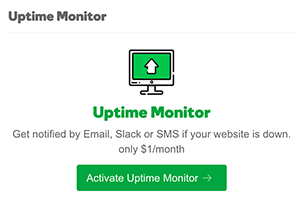 Click Activate Uptime Monitor to start monitoring the site