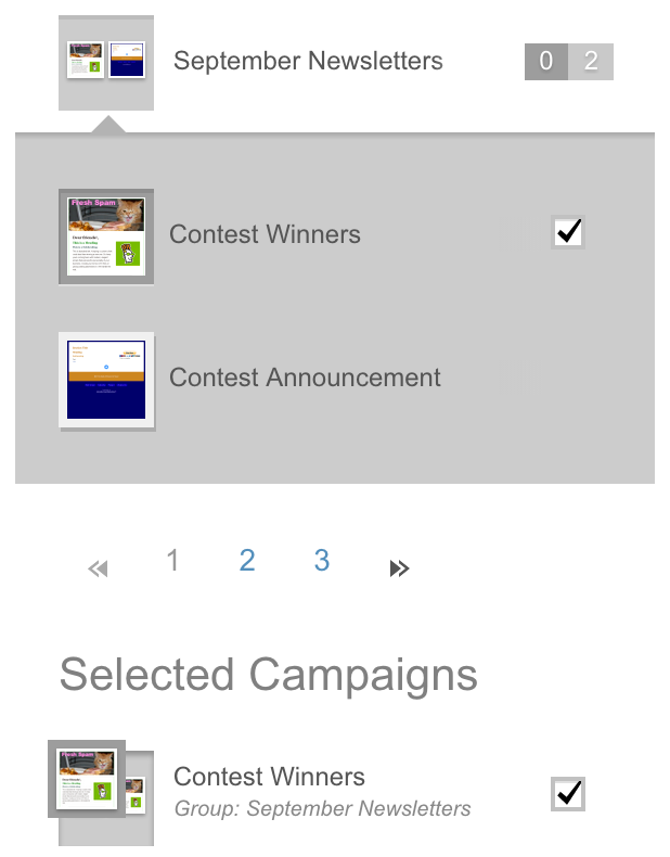 Select campaign in group so it shows under Selected Campaigns.