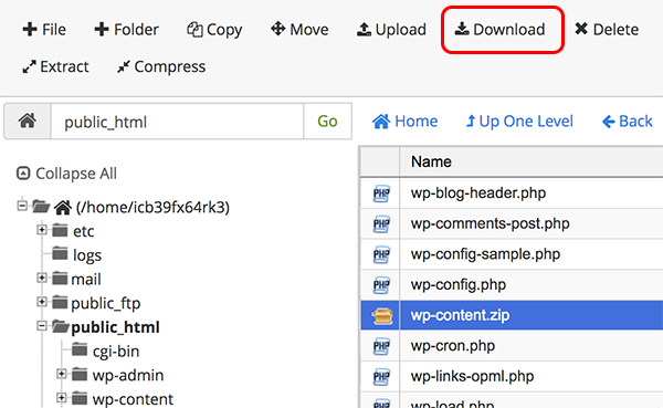 download zip file