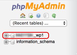 list of databases in phpMyAdmin