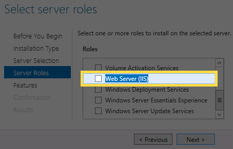 Server Roles page with 'Web Server (IIS)' selected