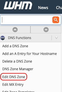 select edit dns zone