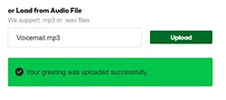 Upload successful