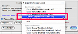Choose option that adds CVS file extension