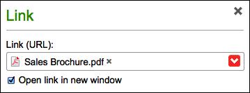 Marca la opción Abrir enlace en una nueva ventana.